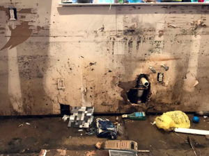 Hurricane Harvey Relief moldy rooms