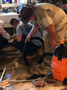 hurricane harvey relief team cleaning house